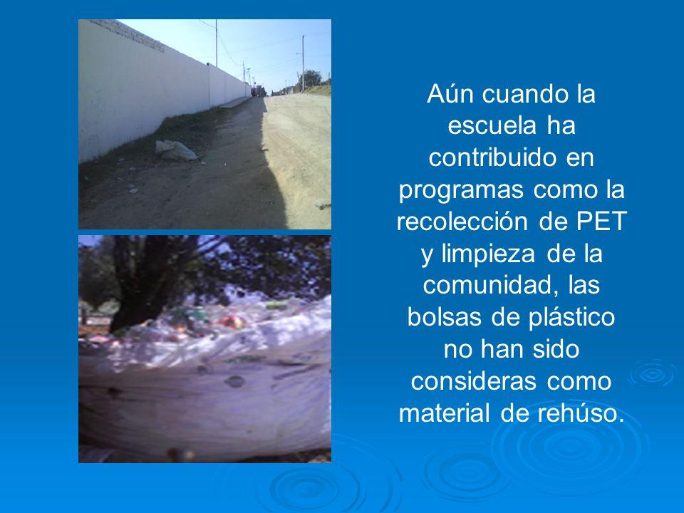 Aún cuando la escuela ha contribuido en programas como la recolección de PET y limpieza de la comunidad, las bolsas de plástico no han sido consideras