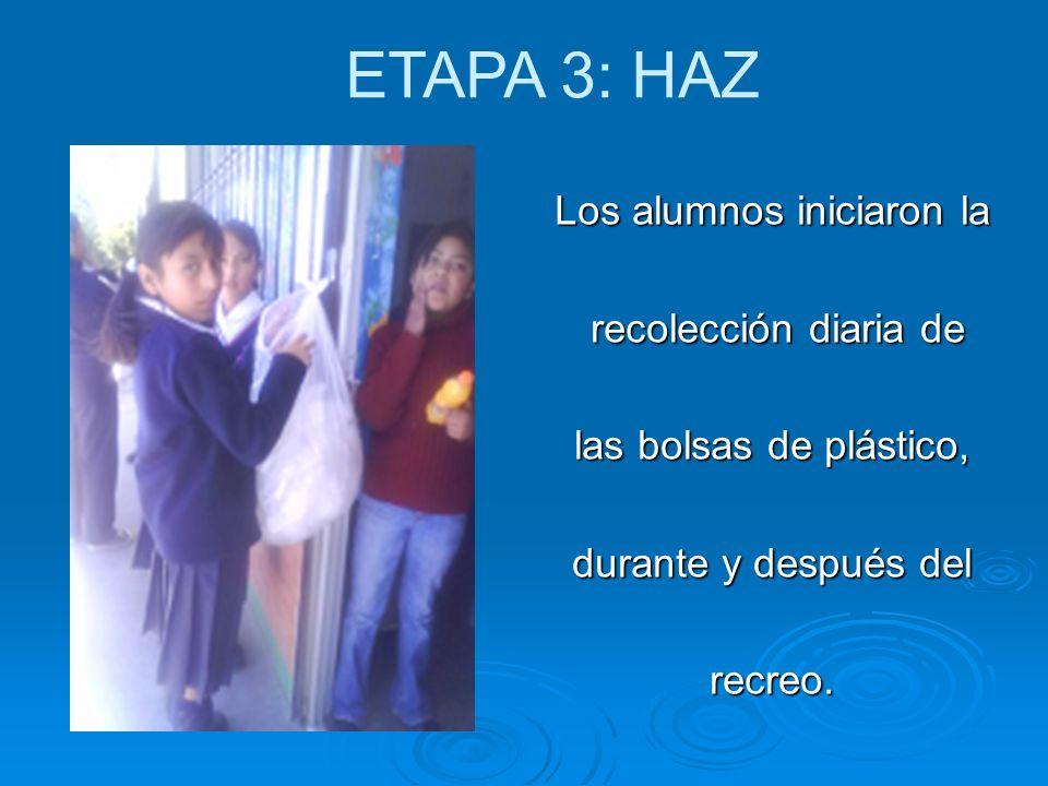 Los alumnos iniciaron la recolección diaria de recolección diaria de las bolsas de plástico, durante y después del recreo. ETAPA 3: HAZ