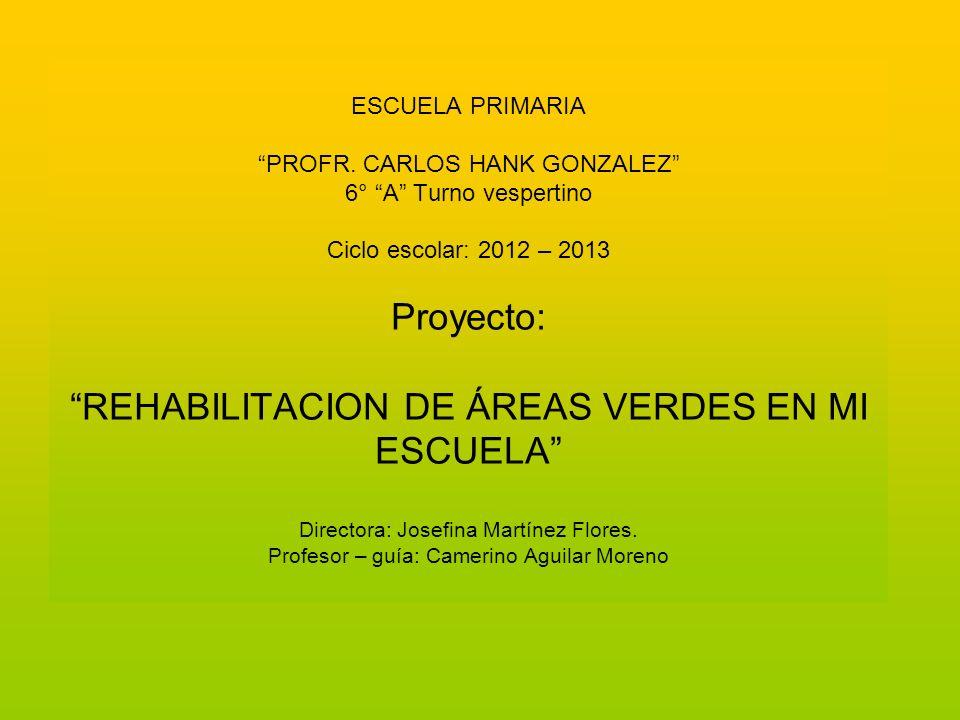 ESCUELA PRIMARIA PROFR. CARLOS HANK GONZALEZ 6° A Turno vespertino Ciclo escolar: 2012 – 2013 Proyecto: REHABILITACION DE ÁREAS VERDES EN MI ESCUELA D