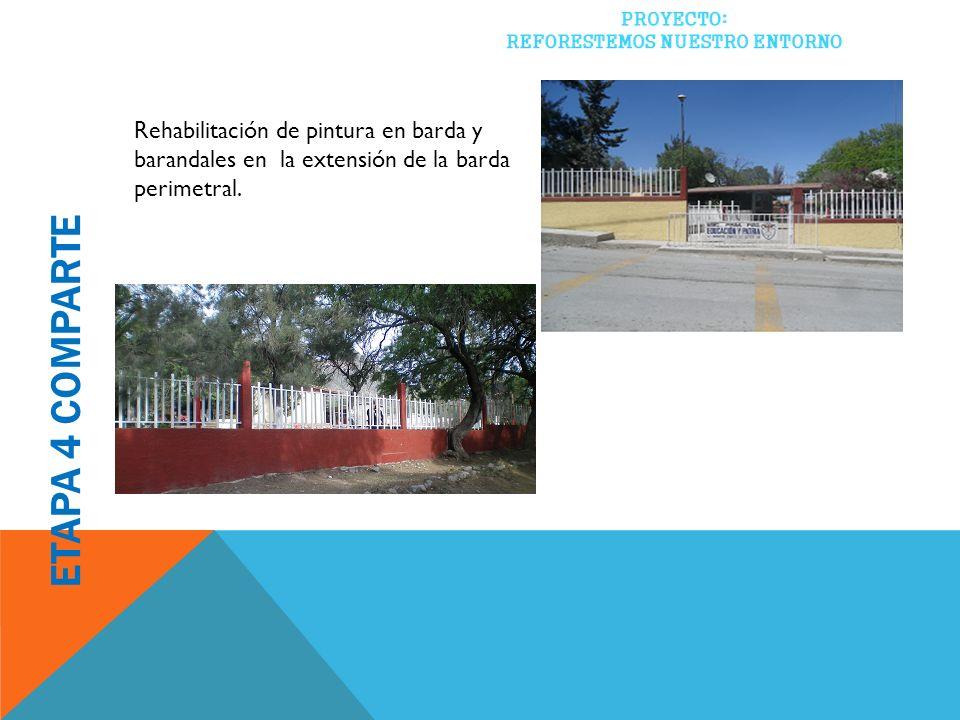 Rehabilitación de pintura en barda y barandales en la extensión de la barda perimetral.