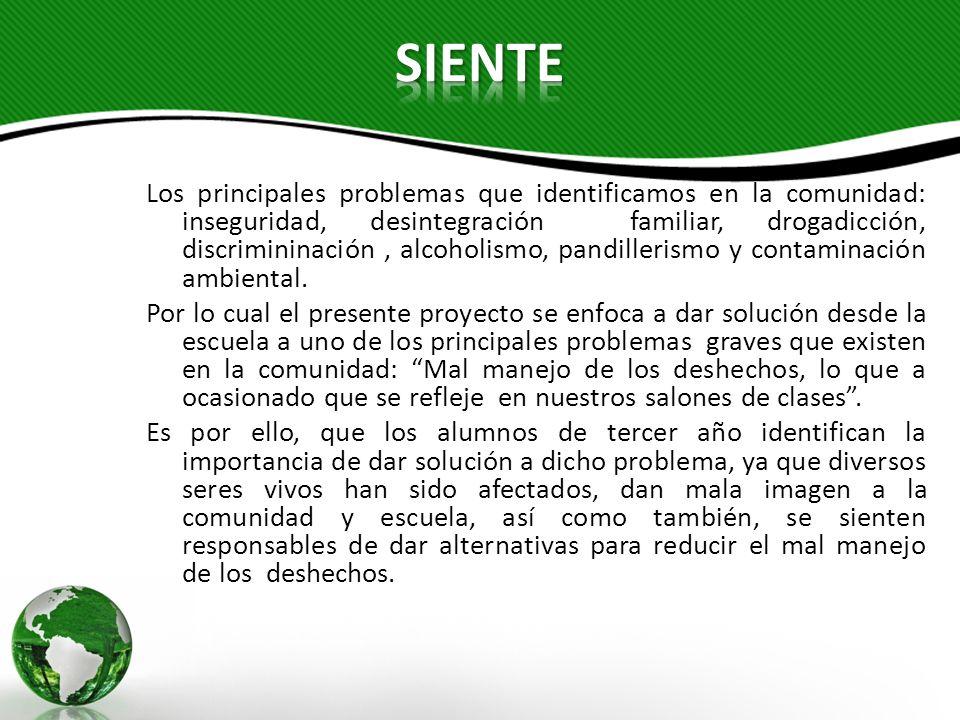 Los principales problemas que identificamos en la comunidad: inseguridad, desintegración familiar, drogadicción, discrimininación, alcoholismo, pandil