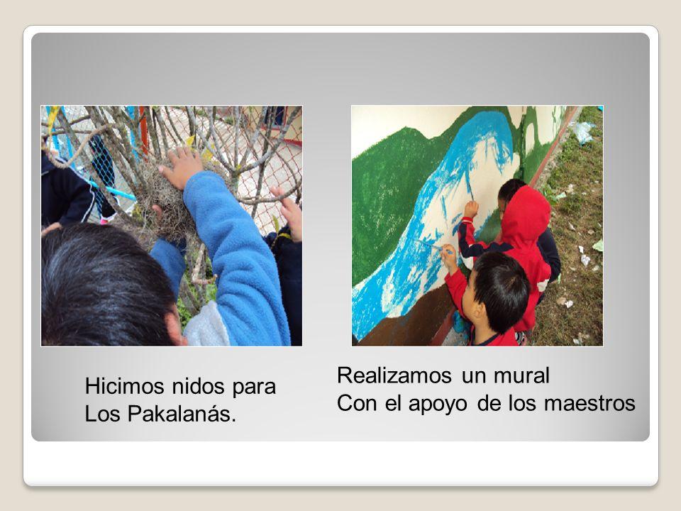 Hicimos nidos para Los Pakalanás. Realizamos un mural Con el apoyo de los maestros