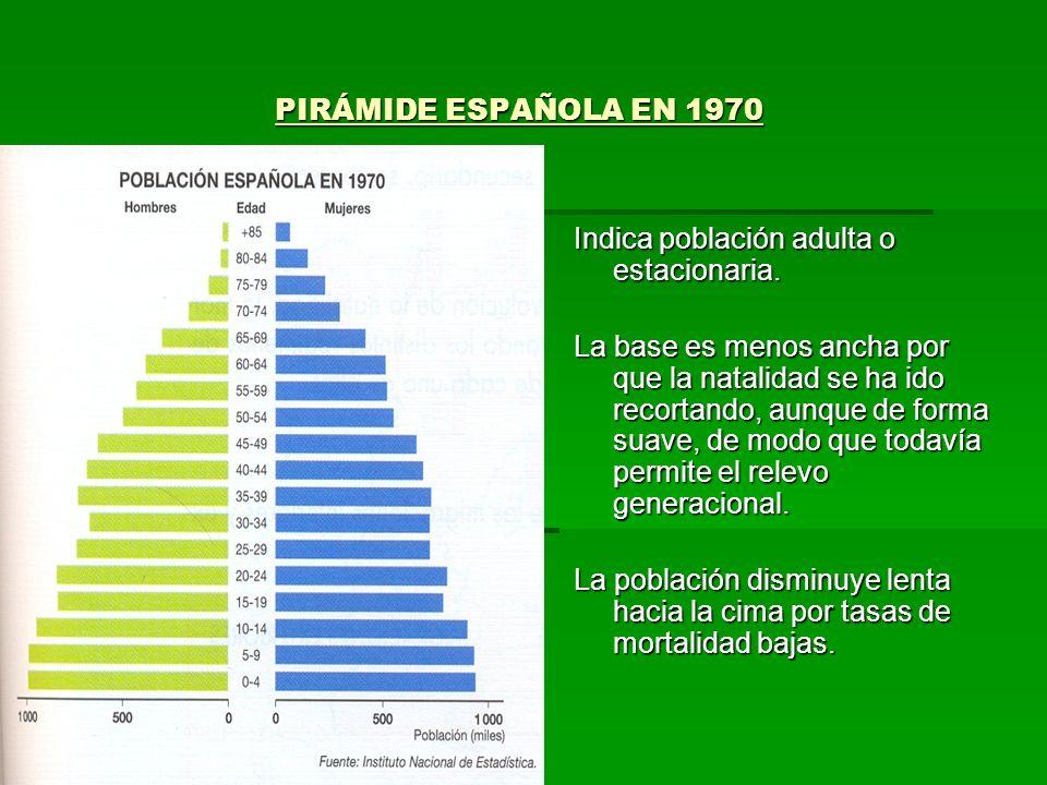 PIRÁMIDE ESPAÑOLA EN 1970 PIRÁMIDE ESPAÑOLA EN 1970 Indica población adulta o estacionaria. La base es menos ancha por que la natalidad se ha ido reco