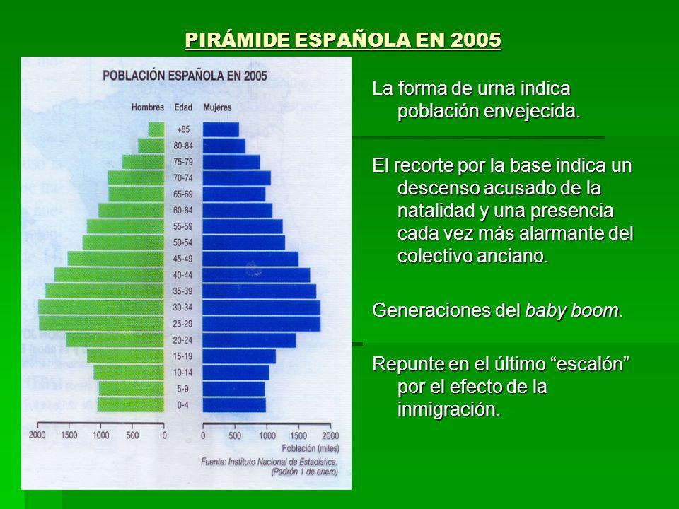 PIRÁMIDE ESPAÑOLA EN 2005 PIRÁMIDE ESPAÑOLA EN 2005 La forma de urna indica población envejecida. El recorte por la base indica un descenso acusado de