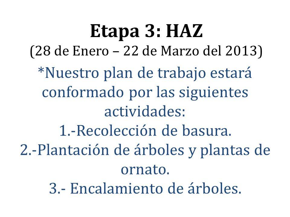 *Nuestro plan de trabajo estará conformado por las siguientes actividades: 1.-Recolección de basura. 2.-Plantación de árboles y plantas de ornato. 3.-