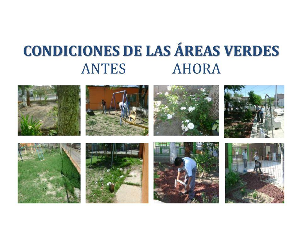 CONDICIONES DE LAS ÁREAS VERDES CONDICIONES DE LAS ÁREAS VERDES ANTES AHORA