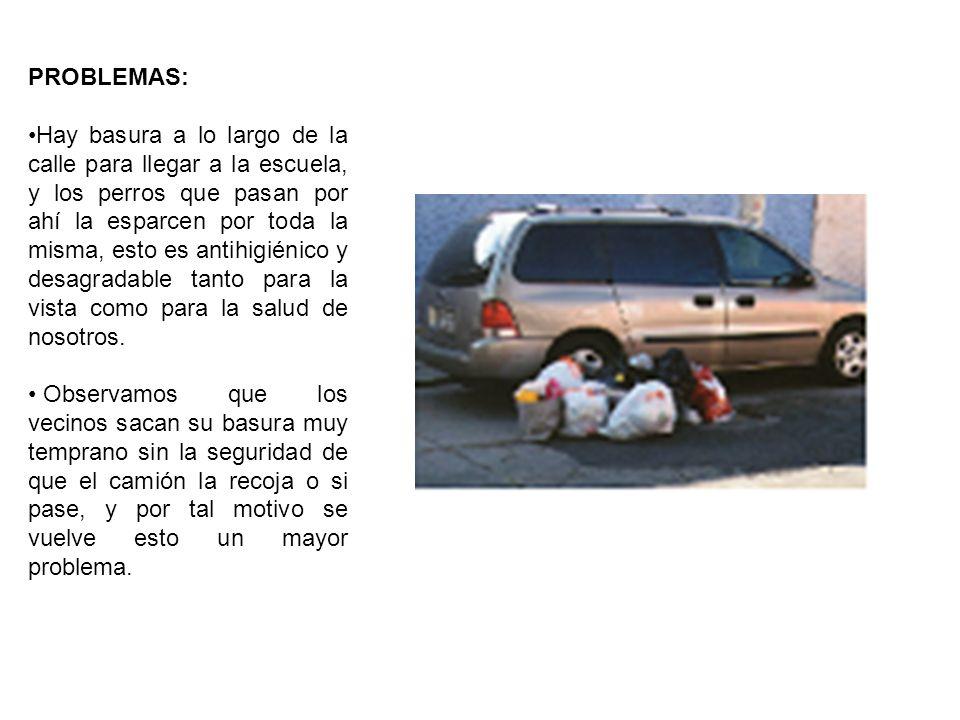 PROBLEMAS: Hay basura a lo largo de la calle para llegar a la escuela, y los perros que pasan por ahí la esparcen por toda la misma, esto es antihigiénico y desagradable tanto para la vista como para la salud de nosotros.