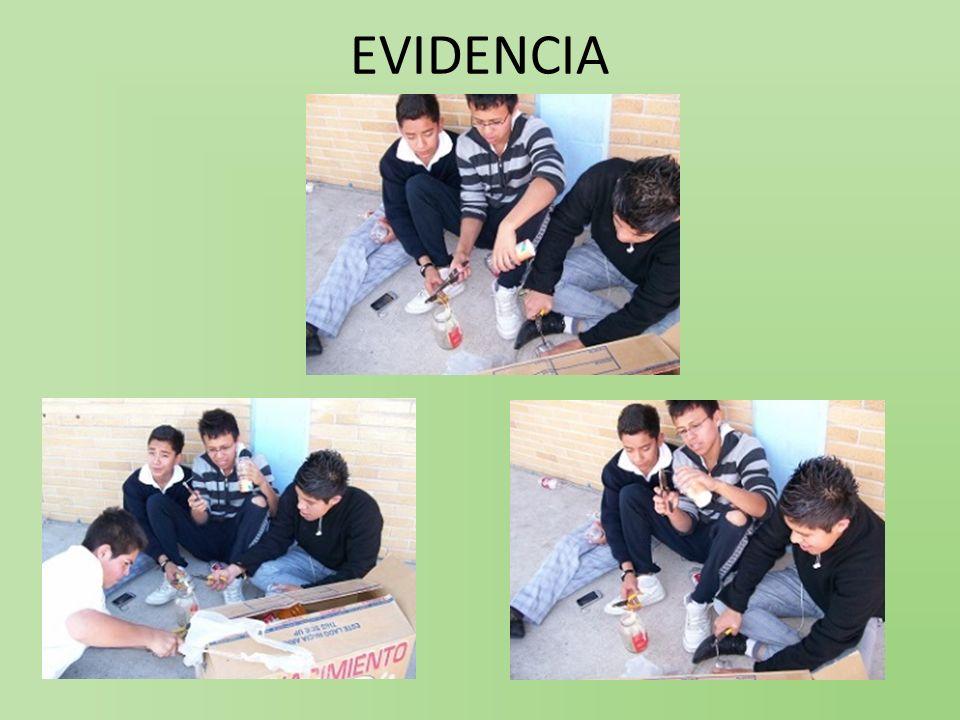 ACTIVIDAD: B) INVESTIGACIÓN Y FORMAS DE CONTROL.