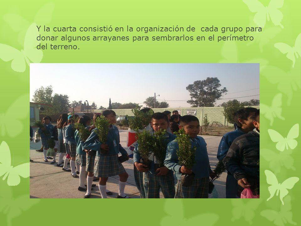 Y la cuarta consistió en la organización de cada grupo para donar algunos arrayanes para sembrarlos en el perímetro del terreno.