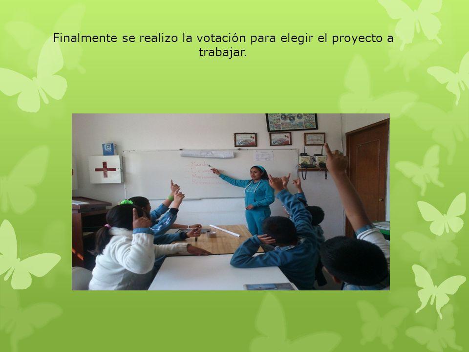 La opción que fue elegida para trabajar como proyecto de cambio fue REFORESTACION.