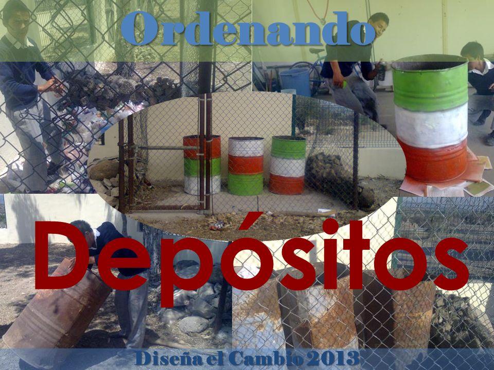 Diseña el Cambio 2013 Ordenando Depósitos