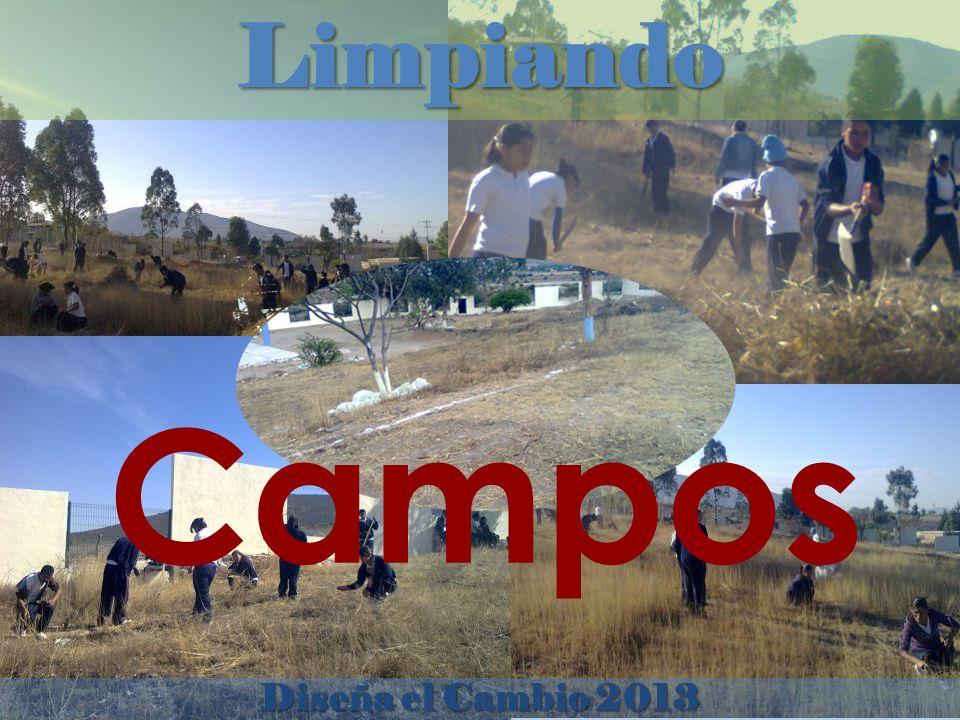 Limpiando Diseña el Cambio 2013 Campos