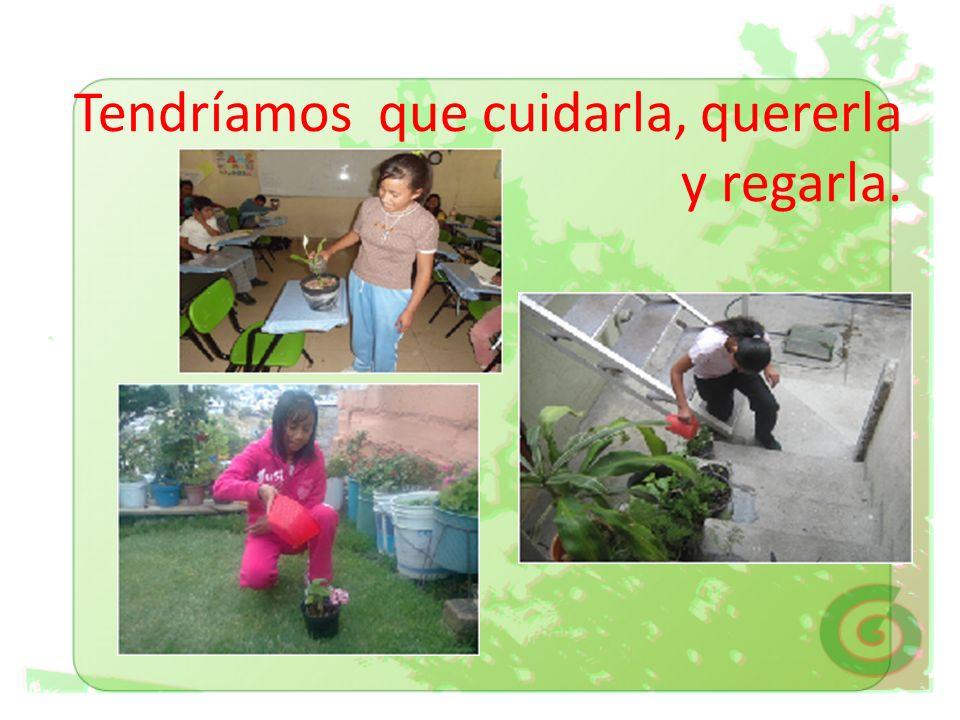 MI MASCOTA ES UNA PLANTA Proyecto puesto en práctica por los alumnos de 6º A de la escuela Primaria Club de Leones No.