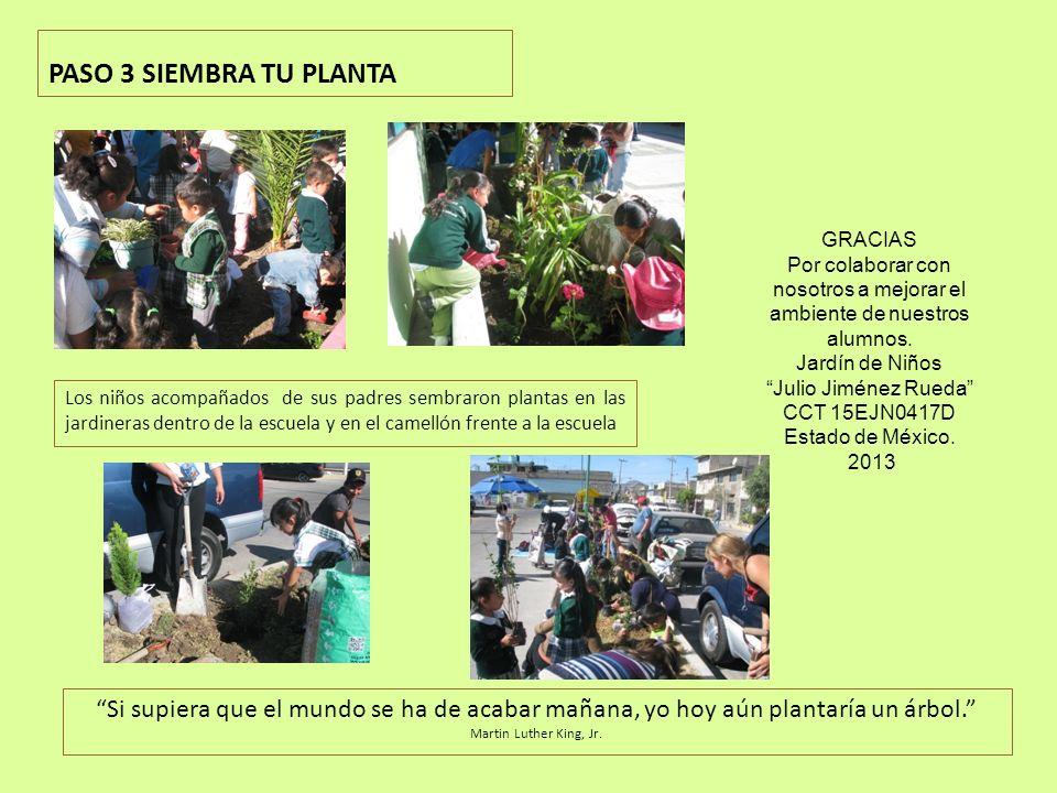 PASO 3 SIEMBRA TU PLANTA Los niños acompañados de sus padres sembraron plantas en las jardineras dentro de la escuela y en el camellón frente a la escuela Si supiera que el mundo se ha de acabar mañana, yo hoy aún plantaría un árbol.