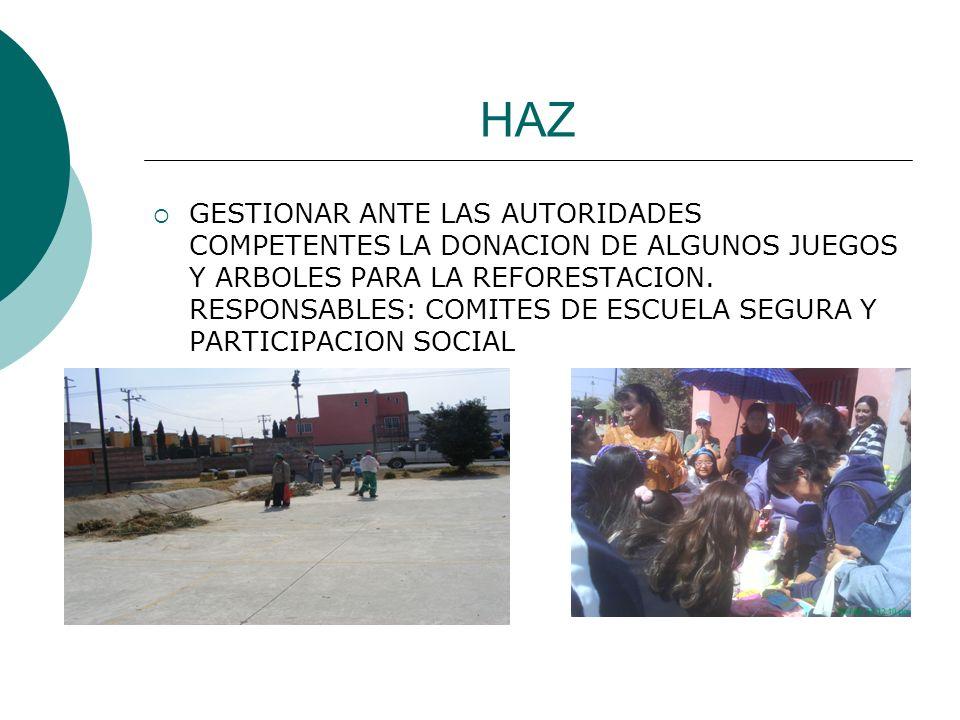 HAZ GESTIONAR ANTE LAS AUTORIDADES COMPETENTES LA DONACION DE ALGUNOS JUEGOS Y ARBOLES PARA LA REFORESTACION. RESPONSABLES: COMITES DE ESCUELA SEGURA