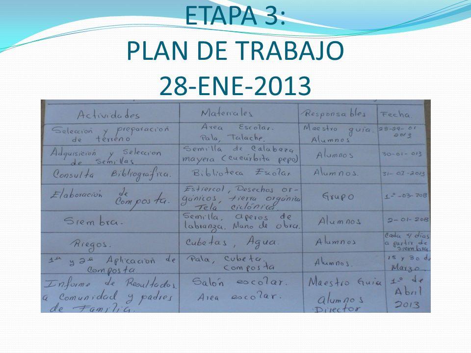 ETAPA 3: PLAN DE TRABAJO 28-ENE-2013