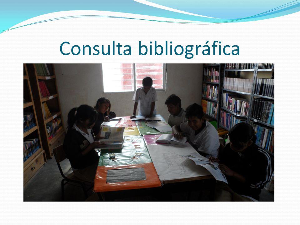 Consulta bibliográfica