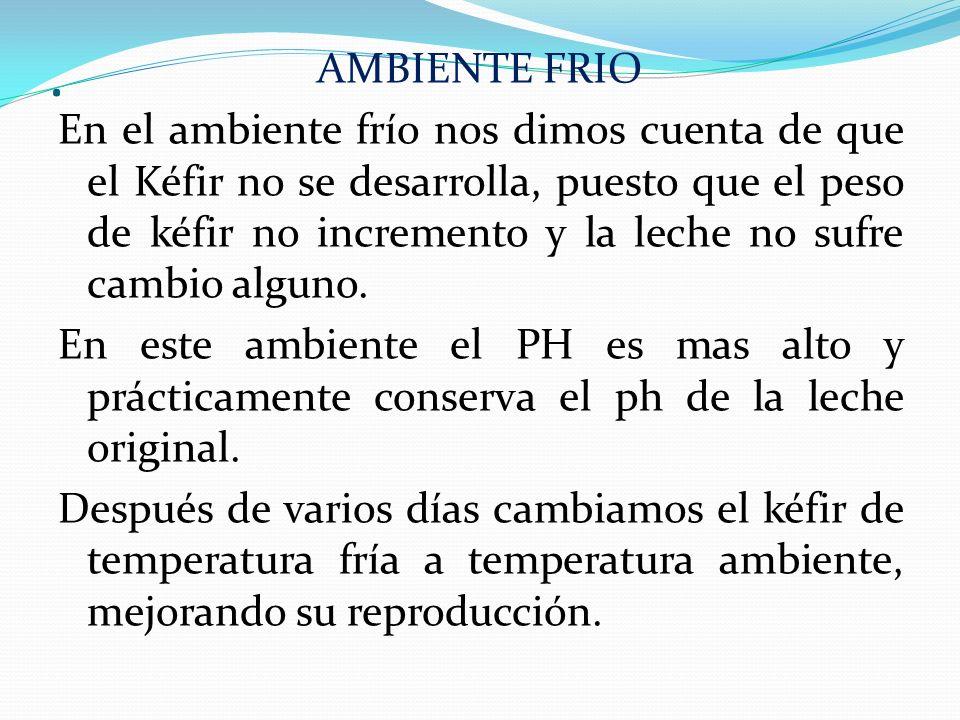 AMBIENTE FRIO En el ambiente frío nos dimos cuenta de que el Kéfir no se desarrolla, puesto que el peso de kéfir no incremento y la leche no sufre cambio alguno.