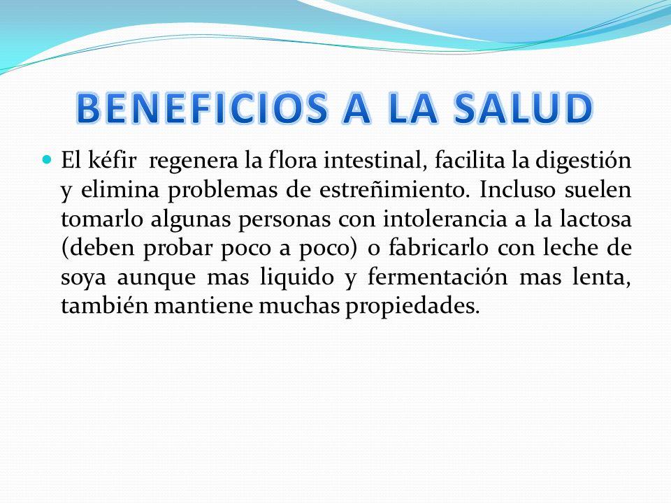 El kéfir regenera la flora intestinal, facilita la digestión y elimina problemas de estreñimiento.