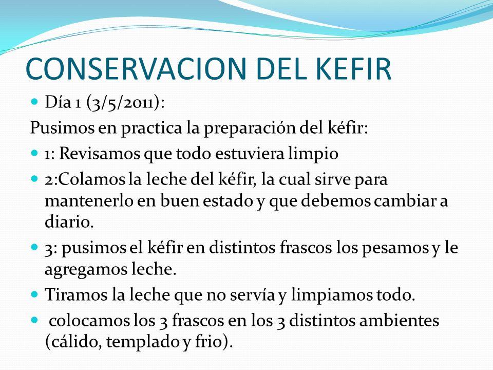 CONSERVACION DEL KEFIR Día 1 (3/5/2011): Pusimos en practica la preparación del kéfir: 1: Revisamos que todo estuviera limpio 2:Colamos la leche del kéfir, la cual sirve para mantenerlo en buen estado y que debemos cambiar a diario.