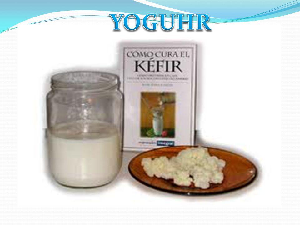 SIGNIFICADO DEL KEFIR Es una combinación de bacterias probióticas y levaduras en una matriz de proteínas, lípidos y azúcares.