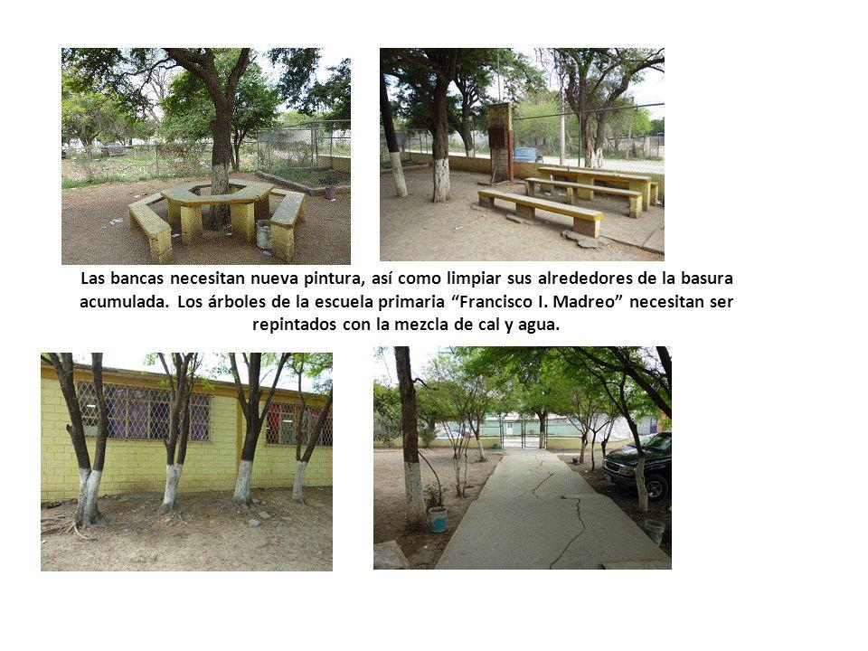 Las bancas necesitan nueva pintura, así como limpiar sus alrededores de la basura acumulada. Los árboles de la escuela primaria Francisco I. Madreo ne