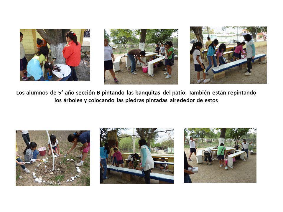 Los alumnos de 5° año sección B pintando las banquitas del patio. También están repintando los árboles y colocando las piedras pintadas alrededor de e