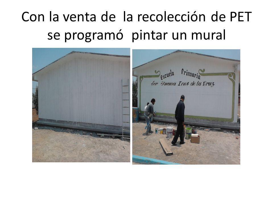 Con la venta de la recolección de PET se programó pintar un mural
