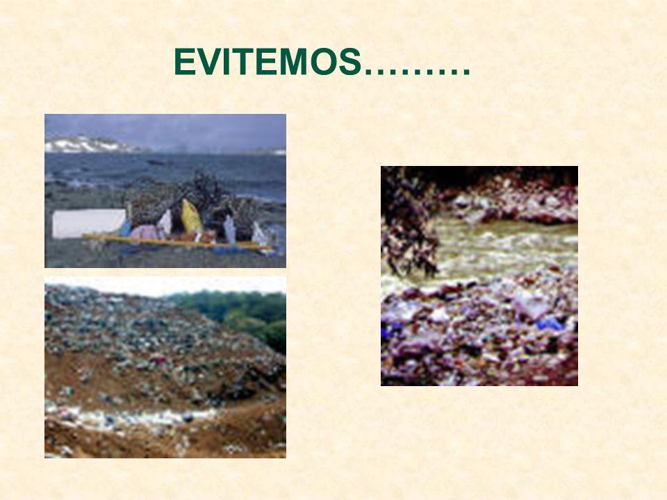 Cada envase en su sitio Contenedores de pilas Contenedor amarillo Contenedor verde Contenedor azul Contenedor Verde oscuro plásticos latas botellas pa