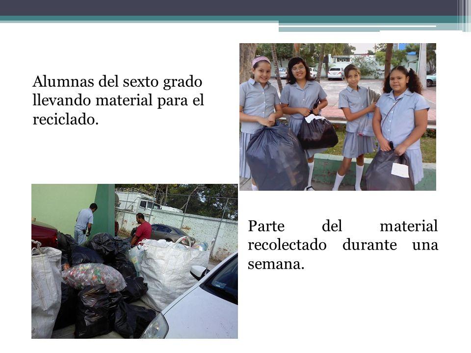 Alumnas del sexto grado llevando material para el reciclado. Parte del material recolectado durante una semana.