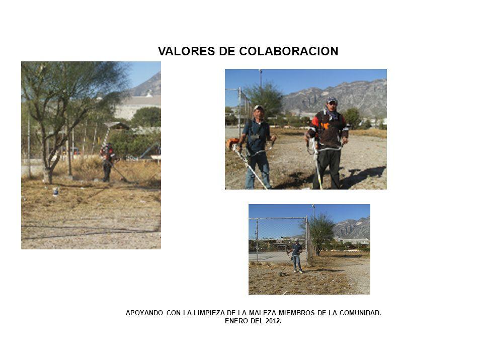VALORES DE COLABORACION APOYANDO CON LA LIMPIEZA DE LA MALEZA MIEMBROS DE LA COMUNIDAD. ENERO DEL 2012.