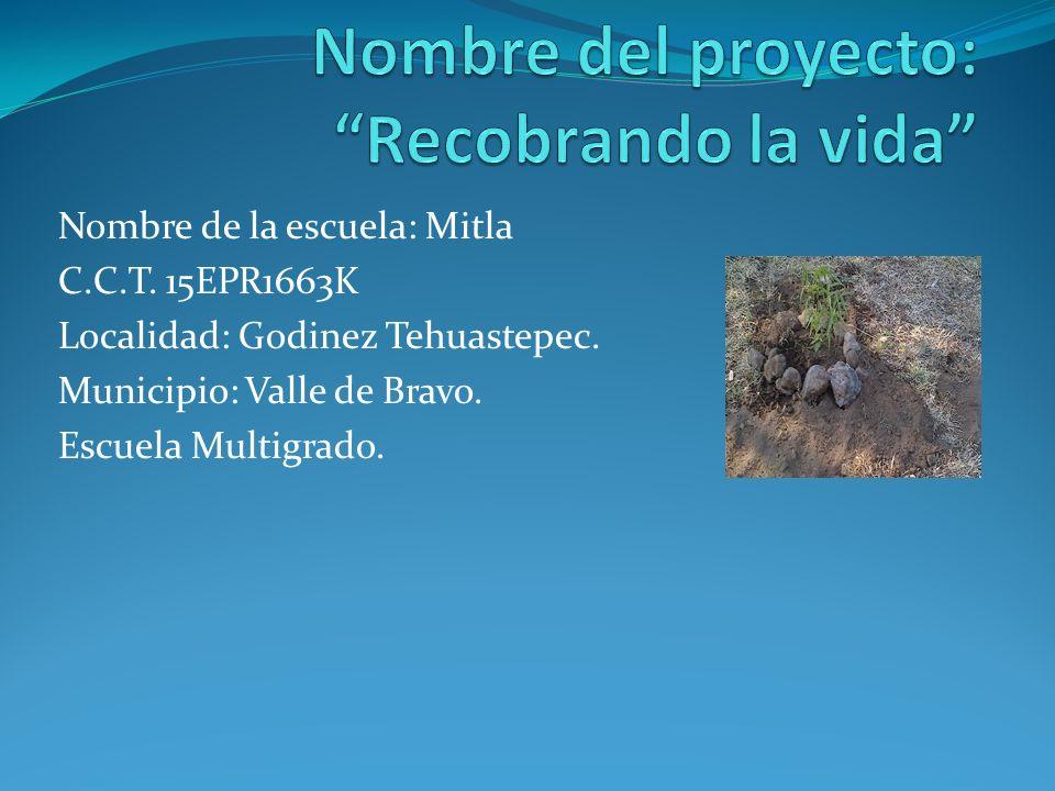 Nombre de la escuela: Mitla C.C.T. 15EPR1663K Localidad: Godinez Tehuastepec. Municipio: Valle de Bravo. Escuela Multigrado.