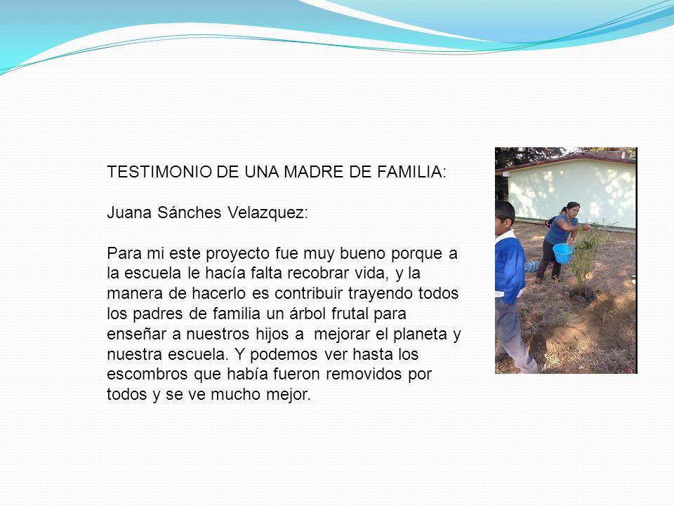TESTIMONIO DE UNA MADRE DE FAMILIA: Juana Sánches Velazquez: Para mi este proyecto fue muy bueno porque a la escuela le hacía falta recobrar vida, y l
