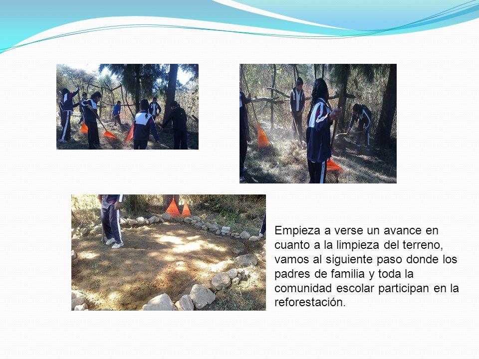 Empieza a verse un avance en cuanto a la limpieza del terreno, vamos al siguiente paso donde los padres de familia y toda la comunidad escolar partici