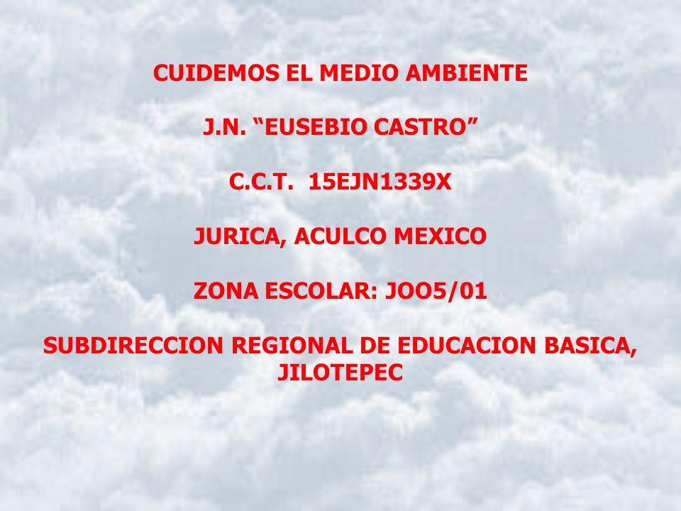 CUIDEMOS EL MEDIO AMBIENTE J.N.EUSEBIO CASTRO C.C.T.