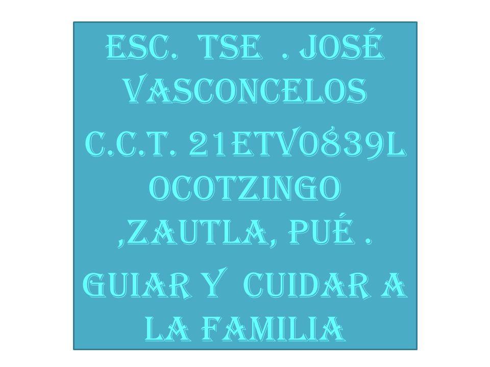 Esc. Tse. José Vasconcelos c.c.t. 21etv0839l ocotzingo,zautla, pué. Guiar y cuidar a la familia