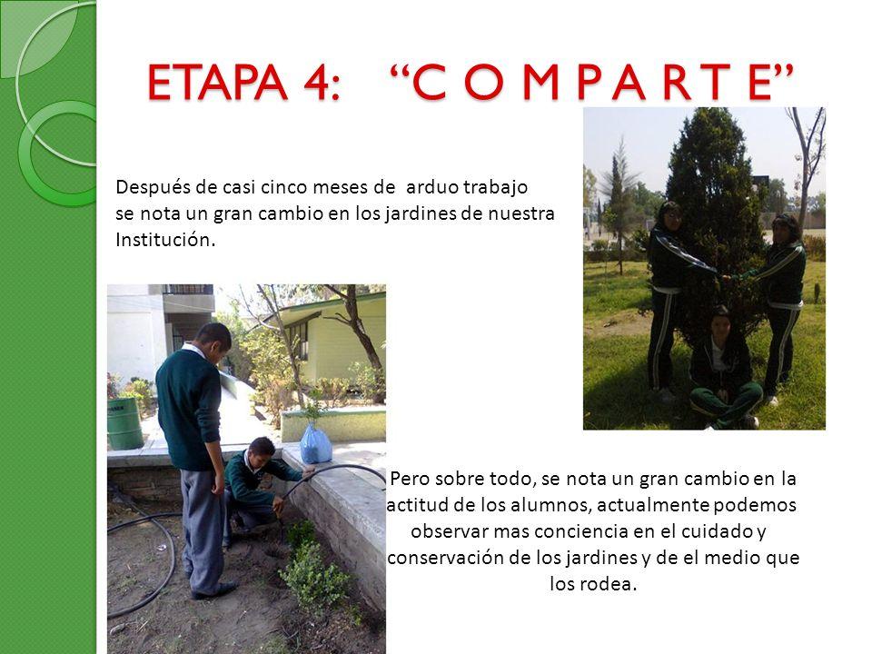 ETAPA 4: C O M P A R T E Después de casi cinco meses de arduo trabajo se nota un gran cambio en los jardines de nuestra Institución. Pero sobre todo,