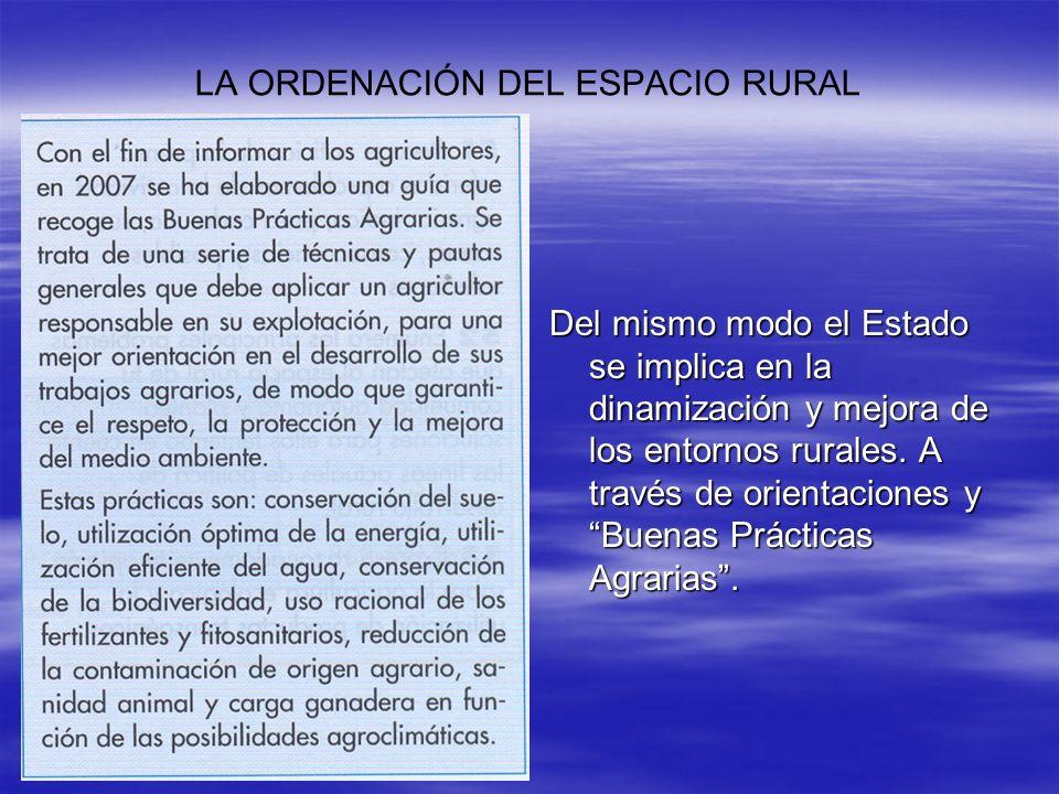 LA ORDENACIÓN DEL ESPACIO RURAL Del mismo modo el Estado se implica en la dinamización y mejora de los entornos rurales. A través de orientaciones y B