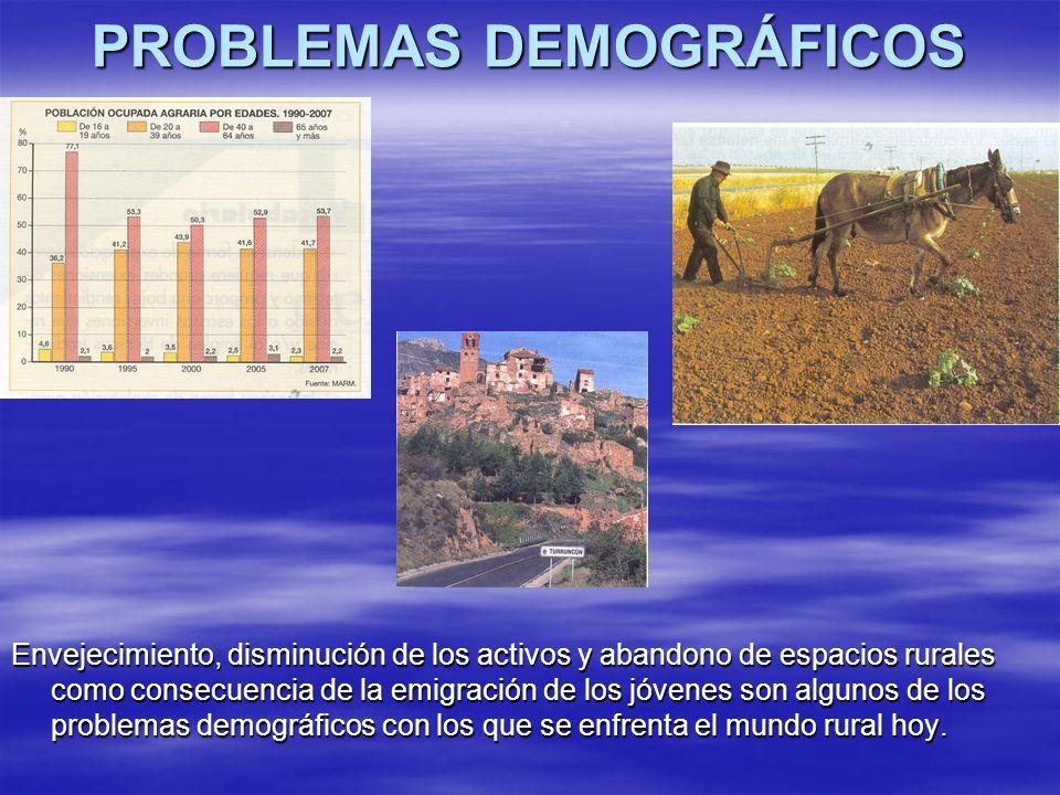 PROBLEMAS DEMOGRÁFICOS Envejecimiento, disminución de los activos y abandono de espacios rurales como consecuencia de la emigración de los jóvenes son