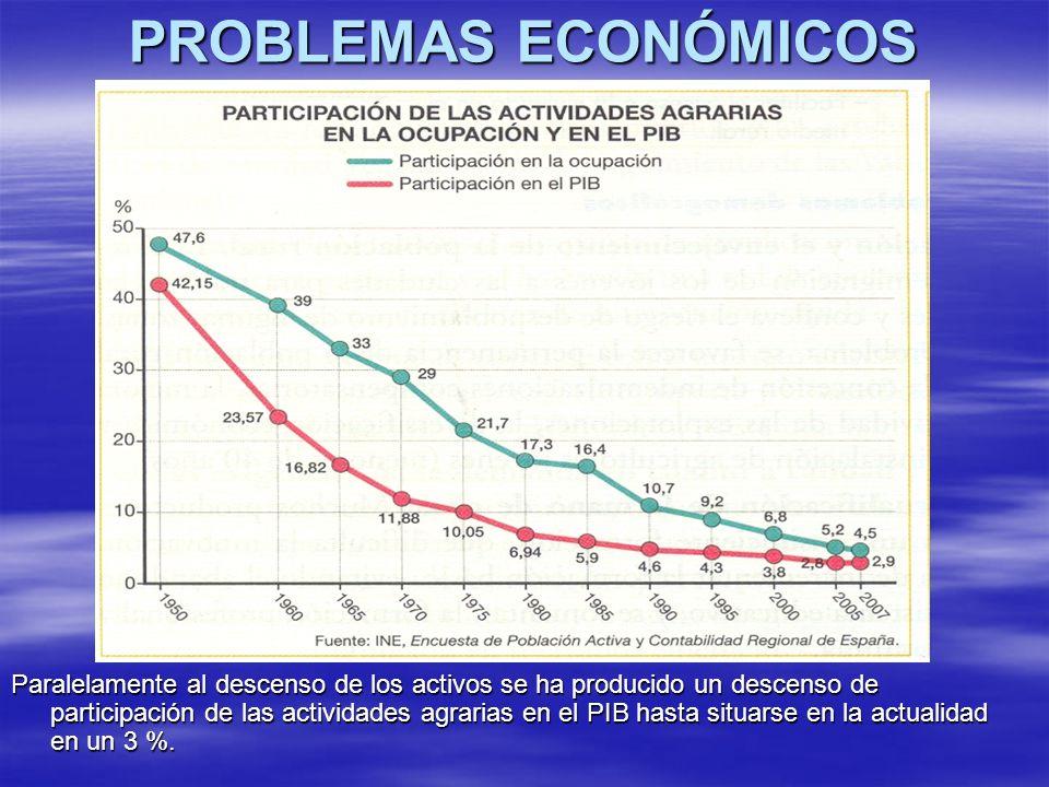 PROBLEMAS ECONÓMICOS Paralelamente al descenso de los activos se ha producido un descenso de participación de las actividades agrarias en el PIB hasta