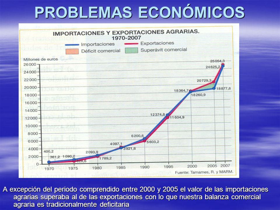 PROBLEMAS ECONÓMICOS A excepción del periodo comprendido entre 2000 y 2005 el valor de las importaciones agrarias superaba al de las exportaciones con