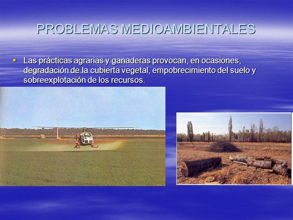 PROBLEMAS MEDIOAMBIENTALES Las prácticas agrarias y ganaderas provocan, en ocasiones, degradación de la cubierta vegetal, empobrecimiento del suelo y