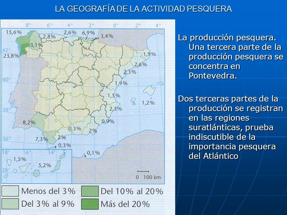 LA GEOGRAFÍA DE LA ACTIVIDAD PESQUERA La producción pesquera. Una tercera parte de la producción pesquera se concentra en Pontevedra. Dos terceras par