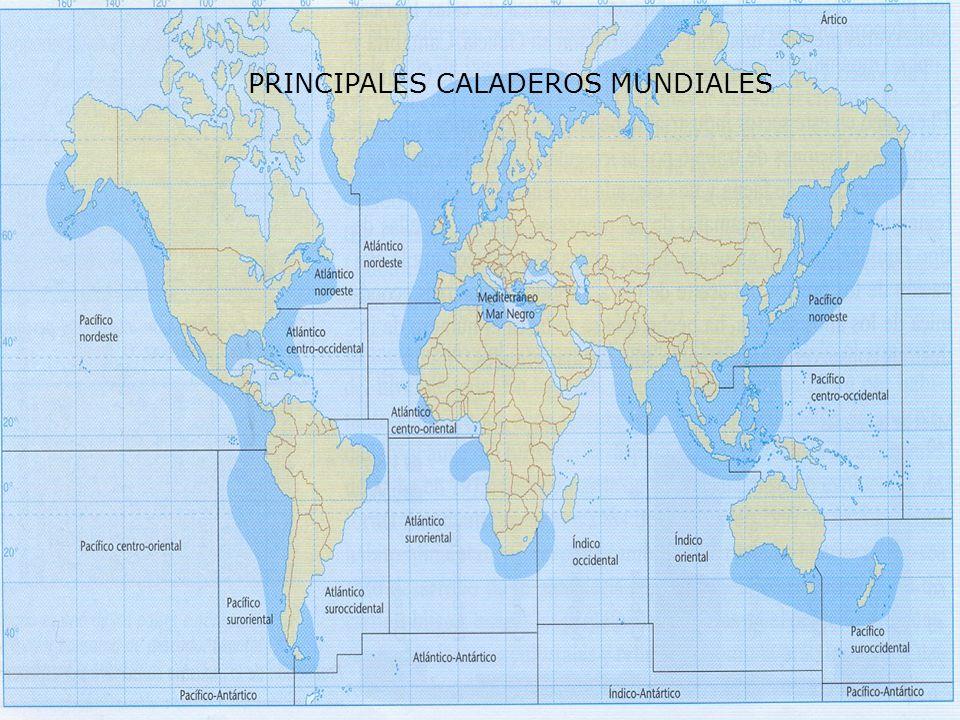 PRINCIPALES CALADEROS MUNDIALES