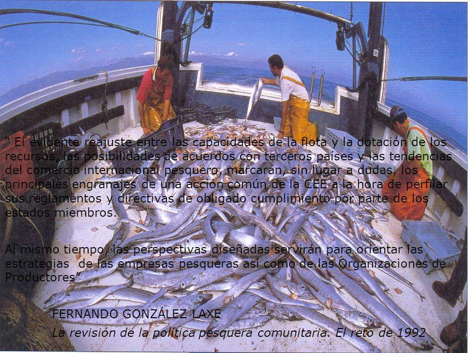 PROGRAMAS DE RENOVACIÓN Y MEJORA DE LA FLOTA A pesar del esfuerzo modernizador de renovación de la flota y de adecuarla a la nueva realidad, el número de barcos orientados a la pesca de altura y de gran altura representa un porcentaje mínimo en el conjunto de la flota española