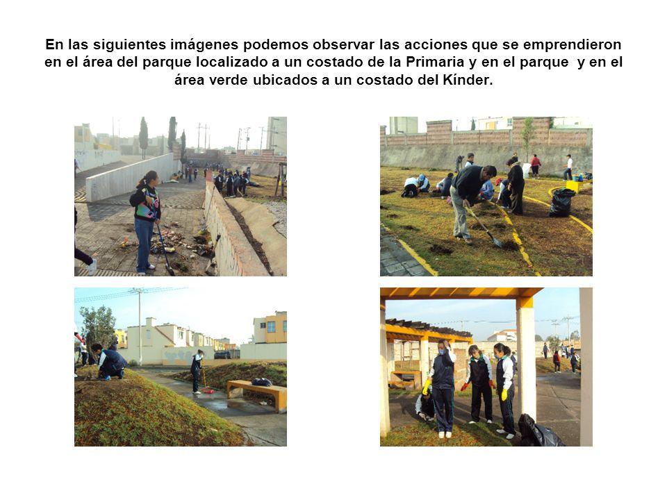 En las siguientes imágenes podemos observar las acciones que se emprendieron en el área del parque localizado a un costado de la Primaria y en el parq