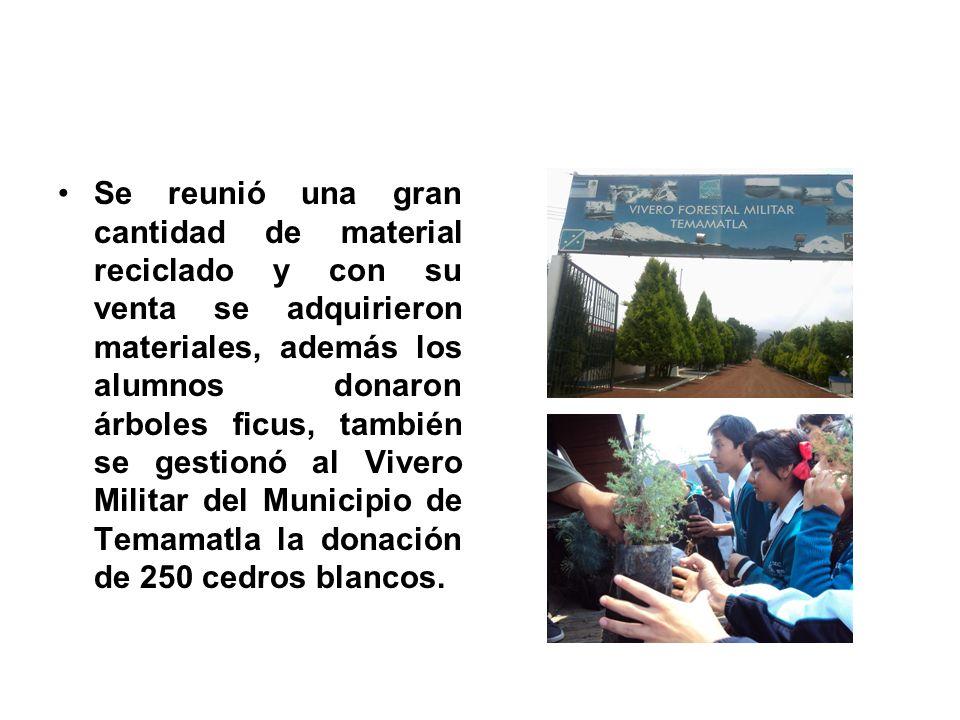 Se reunió una gran cantidad de material reciclado y con su venta se adquirieron materiales, además los alumnos donaron árboles ficus, también se gesti