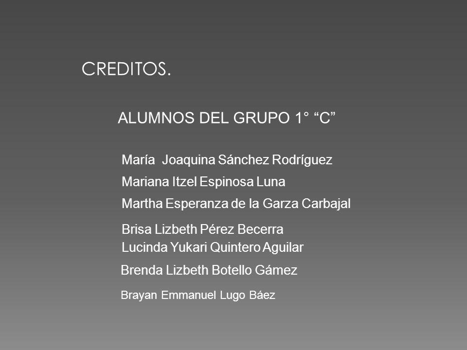 Psicóloga de la Escuela Yadira Sánchez Arratia Director de la Escuela Director de la Escuela M.V.Z.