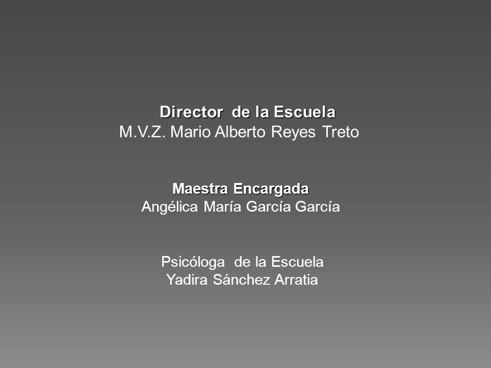 Psicóloga de la Escuela Yadira Sánchez Arratia Director de la Escuela Director de la Escuela M.V.Z. Mario Alberto Reyes Treto Maestra Encargada Angéli