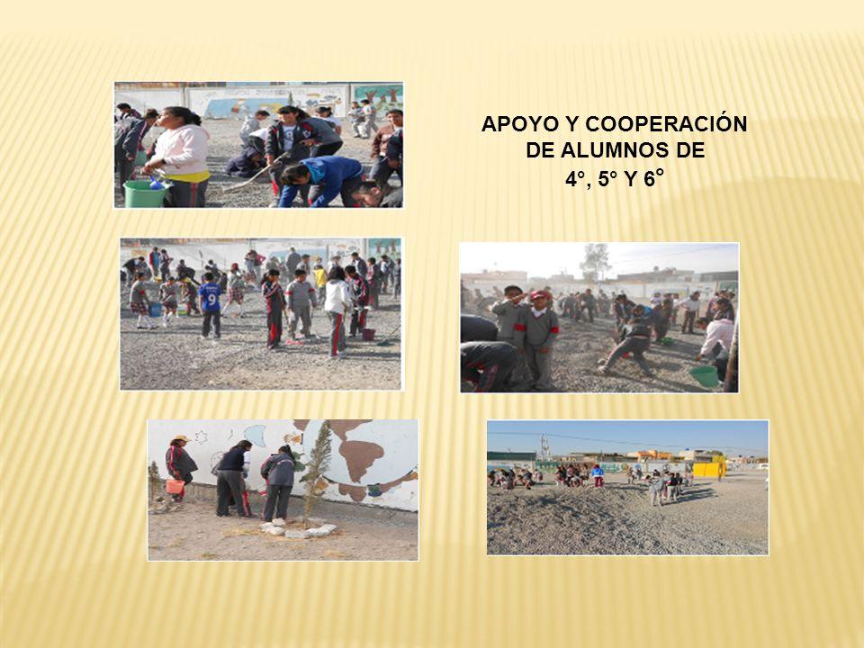APOYO Y COOPERACIÓN DE ALUMNOS DE 4°, 5° Y 6 °